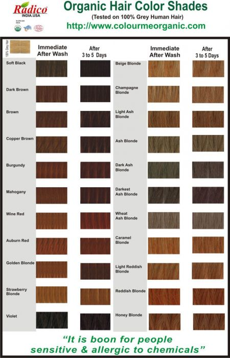 Natural Hair Dye - Dark Ash Blonde - Radico